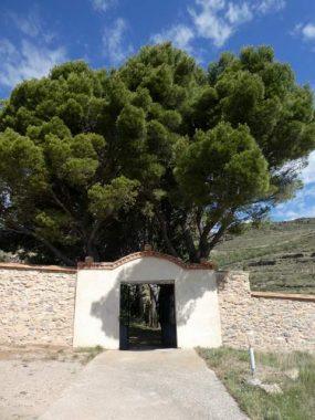 Calcena - Zaragoza